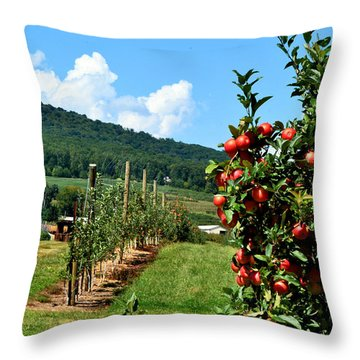 Harvest Time In The Catoctin Mountains Throw Pillow