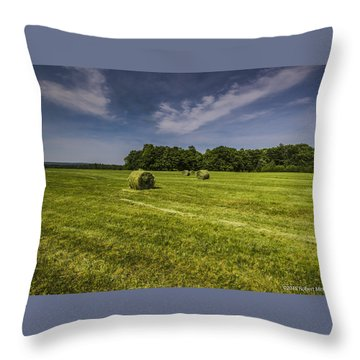 Harvested Throw Pillow