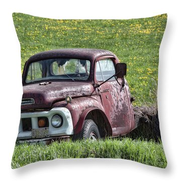Has Caught Some Rust Throw Pillow by Richard Bean