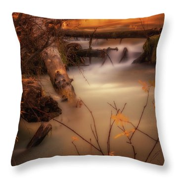 Hat Creek In Gold Throw Pillow