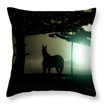 Hat-trick Throw Pillow