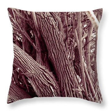 Throw Pillow featuring the photograph Hau Trees by Mukta Gupta
