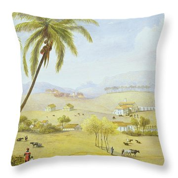 Haughton Court - Hanover Jamaica Throw Pillow by James Hakewill