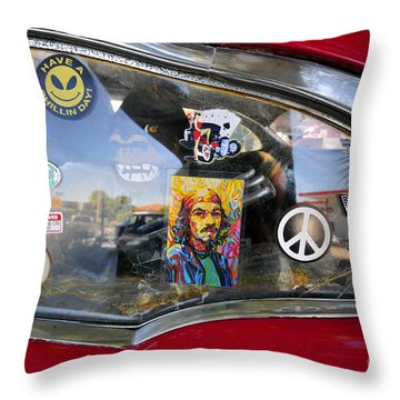 Have A Chillin Day Throw Pillow by David Lee Thompson