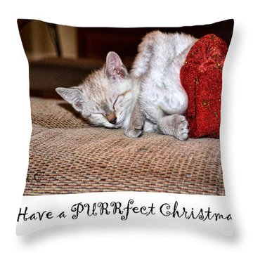 Throw Pillow featuring the photograph Have A Purrfect Christmas by Traci Cottingham
