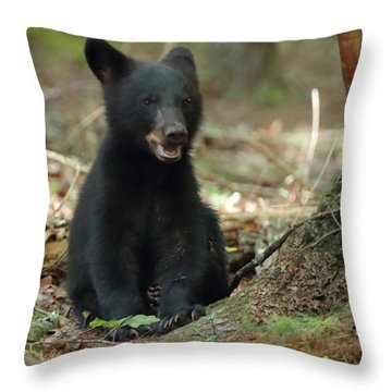Have You Seen My Mother Throw Pillow