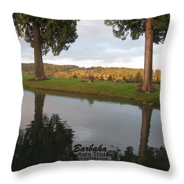 Throw Pillow featuring the photograph Haven Of Rest by Barbara Tristan