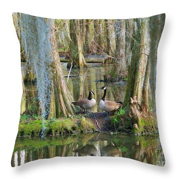 Haven Throw Pillow by Sheila Ping
