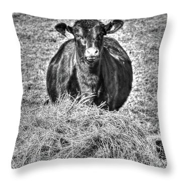 Having A Hay Day Throw Pillow
