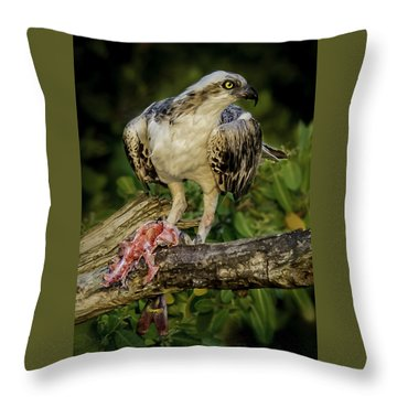 Having Dinner At Sunset Throw Pillow