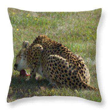 Having Lunch Throw Pillow
