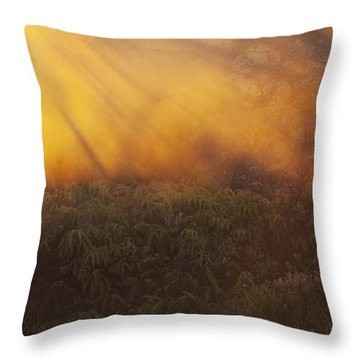 Throw Pillow featuring the photograph Hawaii Steam Vents And Foliage by Charmian Vistaunet