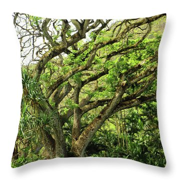 Hawaii Tree-bard Throw Pillow