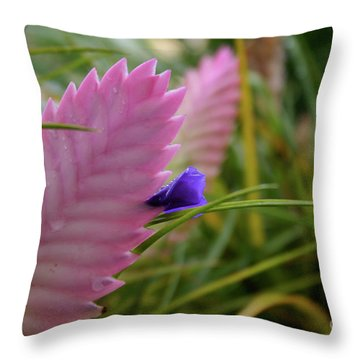 Hawaii01 Throw Pillow