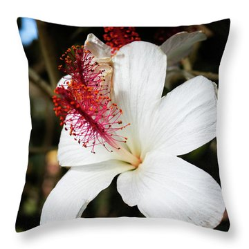 Throw Pillow featuring the photograph Hawaiian Hibiscus  by Joann Copeland-Paul