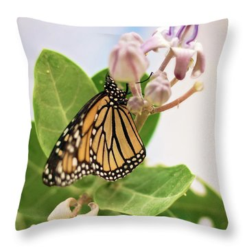 Throw Pillow featuring the photograph Hawaiian Monarch by Heather Applegate