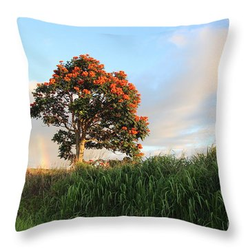 Somewhere Over The Rainbow Throw Pillow by Anthony Jones