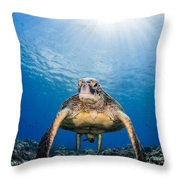 Hawaiian Turtle Throw Pillow