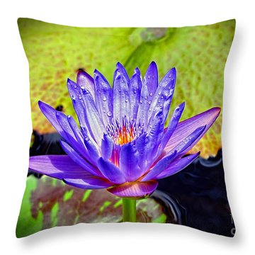 Hawaiian Water Lily Throw Pillow by Sue Melvin