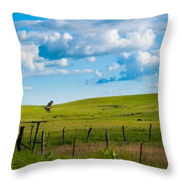 Throw Pillow featuring the photograph Hawk And Flint Hills by Jeff Phillippi