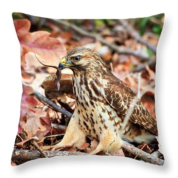 Hawk Catches Prey Throw Pillow