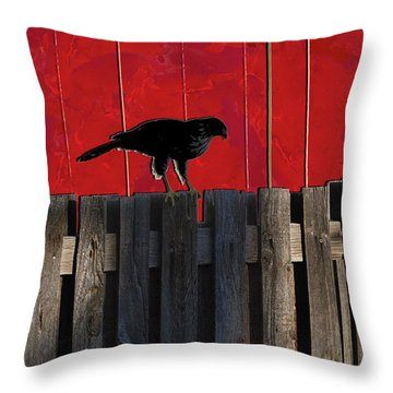 Hawk Throw Pillow by Don Gradner