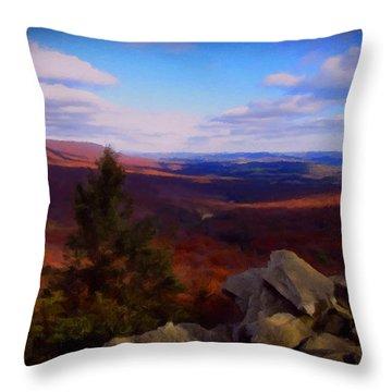 Throw Pillow featuring the photograph Hawk Mountain Pennsylvania by David Dehner