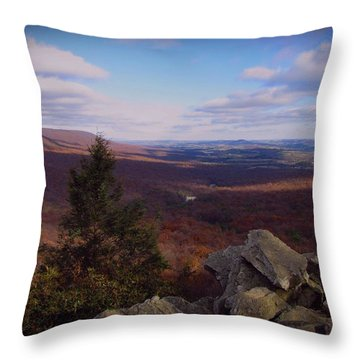 Hawk Mountain Sanctuary Throw Pillow