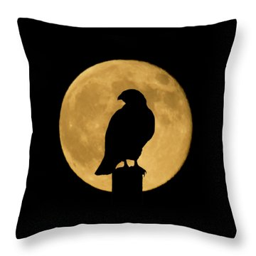 Throw Pillow featuring the photograph Hawk Silhouette 2 by Shane Bechler