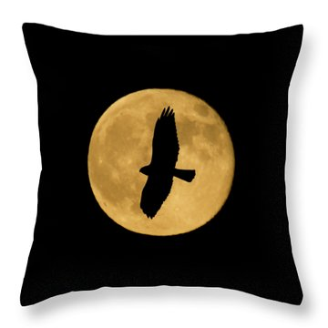 Throw Pillow featuring the photograph Hawk Silhouette by Shane Bechler