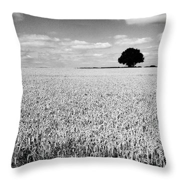 Hawksmoor Throw Pillow by John Edwards