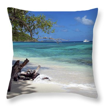 Hawksnest Bay 1 Throw Pillow