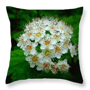 Hawthorn Hearts Throw Pillow