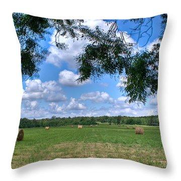Hay Field In Summertime Throw Pillow by Douglas Barnett