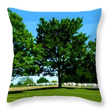 Hay Harvest Throw Pillow