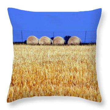Hay Hay Throw Pillow by Debi Demetrion