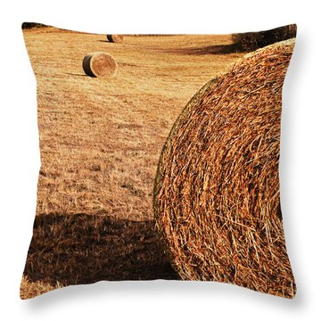Throw Pillow featuring the photograph Hay In The Field by Tamyra Ayles