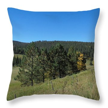Hay Is In Throw Pillow