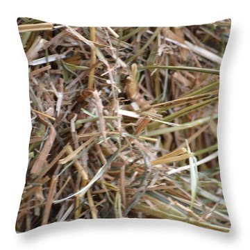 Hay Throw Pillow by Linda Geiger