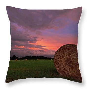 Hay Now Throw Pillow