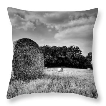 Hay Race Track Throw Pillow by Jeremy Lavender Photography