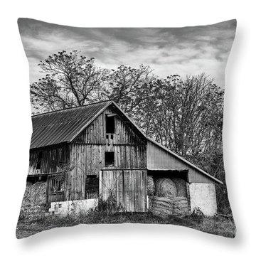 Hay Storage Throw Pillow