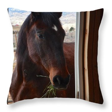 Hay There Throw Pillow