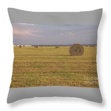 Hayfield Perspective Throw Pillow