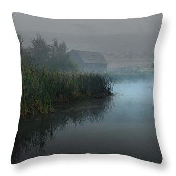 Haynes Ranch Predawn II Throw Pillow by John Poon