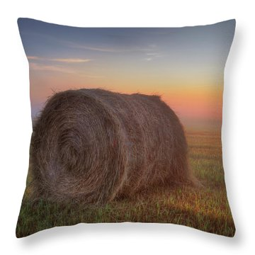 Hayrise Throw Pillow by Dan Jurak