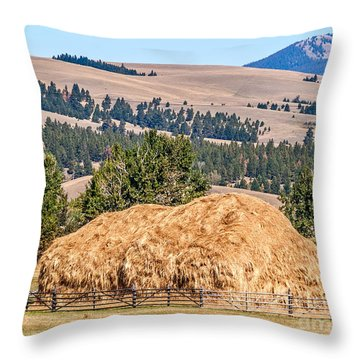 Throw Pillow featuring the photograph Haystack Created With A Beaverslide by Sue Smith