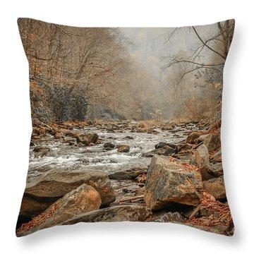 Hazy Mountain Stream #2 Throw Pillow