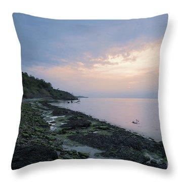 Hazy Sunset Throw Pillow
