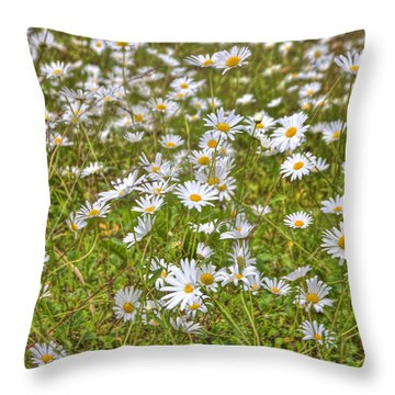 Throw Pillow featuring the photograph Hdr Desert Wildflowers by Matthew Bamberg